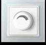 MRO3609: 500W Dimmer Image